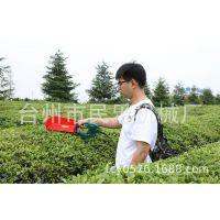 小型充电电动采茶机 锂电池采茶机 充电采茶机 单人采茶机 便携式
