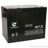 正品CONSENT光盛阀控密封式蓄电池-保价