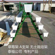 无土栽培架-无土栽培架生产厂家-泰福钢塑管(推荐商家)
