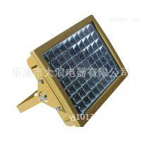 CCD97防爆免维护节能灯