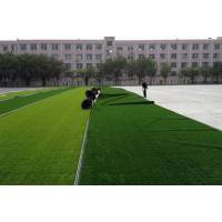 人造草坪 铺设足球场人造草 优世体育