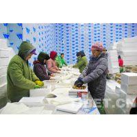 贵州省恒温冷库优惠安装-贵州品牌展柜订购-商超冷柜批发厂家