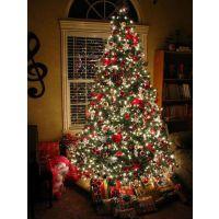 梦幻圣诞树圣诞灯饰定制圣诞资源现货租售