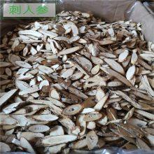 刺五加功效与作用 刺五加茶产地批发价格 哪里购买多少钱一公斤
