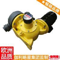 进口加药泵 伽利略计量泵经销商 单隔膜计量泵 星肆