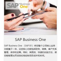 山东SAP代理商 SAP B1管理软件 中科华智SAP实施商