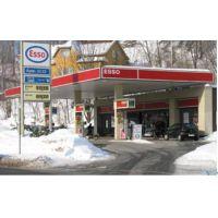 2019年3月第20届北美加拿大国际专业加油(气CNG, LNG)站设备及便利配套设施贸易展