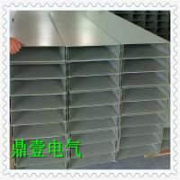 广东厂家直销全国发货喷塑电缆桥架200*100 规格齐全量大从优