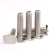 定制医学设备用不锈钢螺丝非标T头机丝不锈钢螺丝厂家生产
