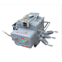 ZW20-12F/630 柱上分界高压真空断路器 ZW20真空开关带零序分界