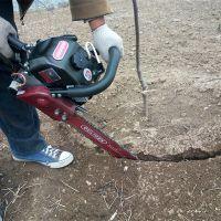 厂家供应带土球汽油链条挖树机 合金链条式移苗机 手提式苗木移植机