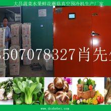 有机农产品果蔬真空预冷机价格