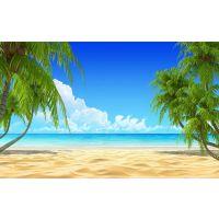 3d瓷砖影视墙 现代唯美 客厅电视背景墙自然风景椰树沙滩