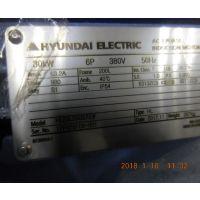 现代电机HYUNDAI HEAVY INDUSTRIES HL20LSR357E 30KW 6P