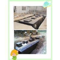 疗养院废水消毒设备—净源