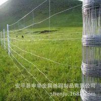 养殖浸塑荷兰网、镀锌牛栏网、铁丝网边坡防护网草原防护网