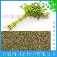 批发农作物种子、种苗 芹菜种子 小香芹种子 西芹种子
