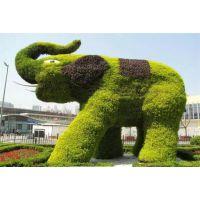 中璞园林景观雕塑小品大型仿真动物植物绿雕