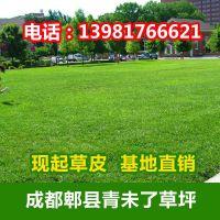 成都芳草芊芊园林绿化工程有限公司