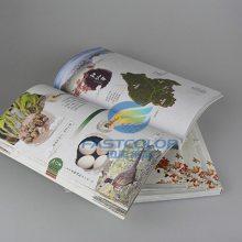 画册印刷定制 广告宣传册印刷产品说明书定做 企业宣传册印刷制作