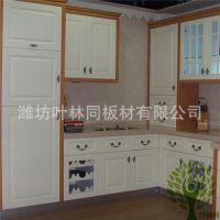 生产加工整体橱柜 厨房橱柜 吸塑模压板橱柜 吊柜 叶林同品牌
