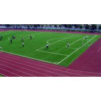 足球场地面改造/规格/工程造价/草坪专业施工厂家/施工案例/面积