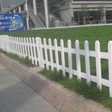 浙江温州塑钢栅栏护栏