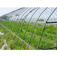 衢州_蔬菜钢管大棚骨架价格_放心选购