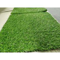 人造草坪多少钱一平方?广东煌盛 超低价格