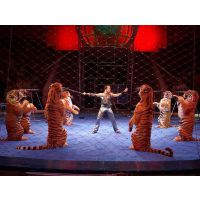 大型小型动物表演 马戏团表演杂技出租