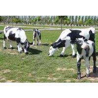 佛山玻璃钢雕塑厂家定做动物公园户外摆件