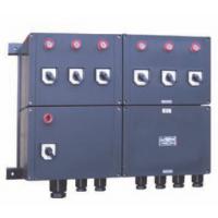 XD(M)C-P系列全塑防爆防腐动力(照明)配电箱