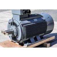 Menzel大型工业直流电机 德国进口 原装正品型号IM B3