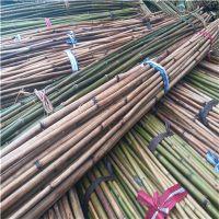 供应优质江西豆架杆 豆角芸豆豇豆支架小竹竿 2.5米、3米竹竿
