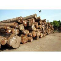 青岛港进口木材报关清关所需的材料单证