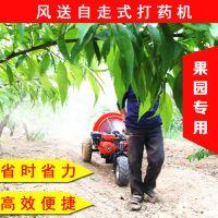 佳诚大面积果园果树杀虫专用风送式打药机 汽油四冲程蔬菜喷雾机
