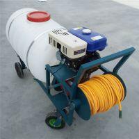 源头厂家直供手推式高压喷药机 园林绿化喷雾器 超长拉管汽油打药机