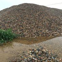 批发鹅卵石 水过滤 河道 建筑装饰用天然鹅卵石