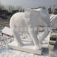 供应精美汉白玉石雕大象 吉祥如意石象 招财看门大象
