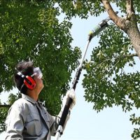小型多功能汽油修剪机 园艺高空果树树枝修剪刀