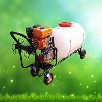 手推式打药机园林用 电动打药机充电式农用农药高压喷雾器