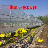 专业建造生态观光农业大棚 新型简易餐厅钢构大棚 连体钢管大棚
