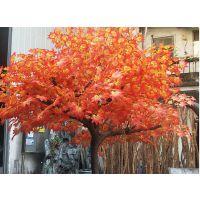 仿真(红)枫树多少钱一棵