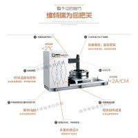 拉萨WTR-60-4大型全自动智能高频感应加热器 轴承专用加热器 厂家直销