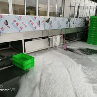 连续式洗筐机 洗筐机生产厂家 鸡蛋托盘清洗设备 鼎鸿价格优惠