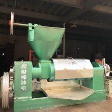 江苏新沂120型菜籽智能榨油机价格 冷热双榨花生压榨机多钱