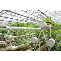 供应黑龙江玻璃无土栽培的供货商 鑫泽温室