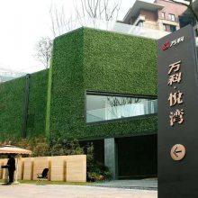 高品质仿真植物墙,仿真绿植墙,绿植门口,抗紫外线、阻燃草坪