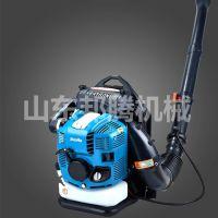 邦腾汽油吹雪机 新型大功率清雪设备 农用大棚专用手提吹雪机