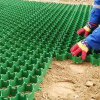 优质HDPE植草格厂家 草坪格 停车场飞机场高尔夫球场小区绿化带专用草坪砖